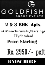 Gold Fish Abode Vyoma